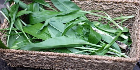 Nature Conservation - Introduction to Foraging - Ransom Hall - CL tickets