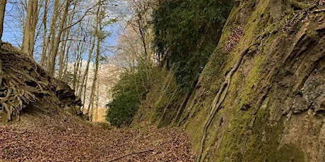 Guided Geology Walk - Upper Soudley and the Blue Rock Trail tickets