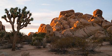 Leading Well Learning Retreat - Arizona - November 16 -19, 2021 tickets