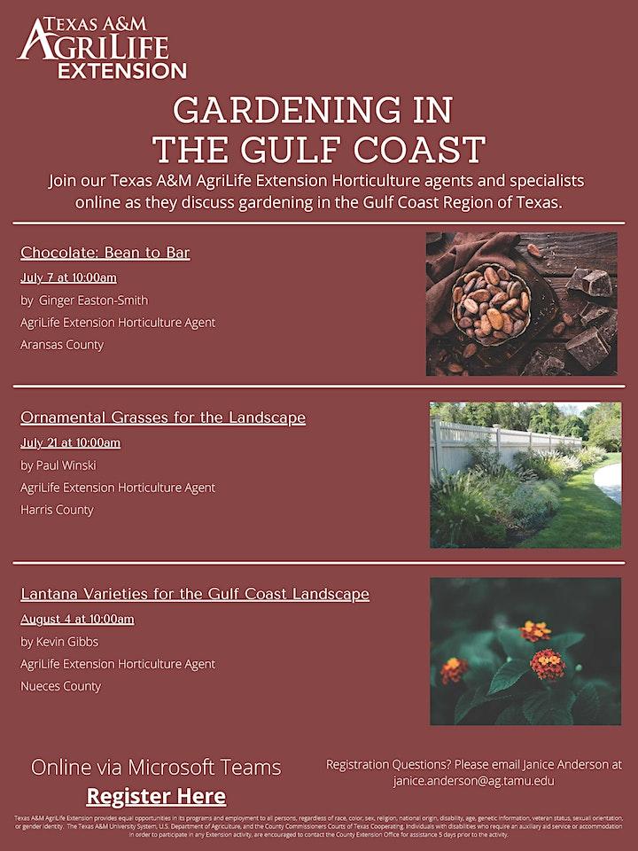 Gardening in the Gulf Coast image