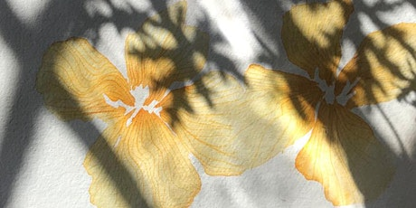 TOAST | Wild Botanical Painting with Jess Wheeler tickets