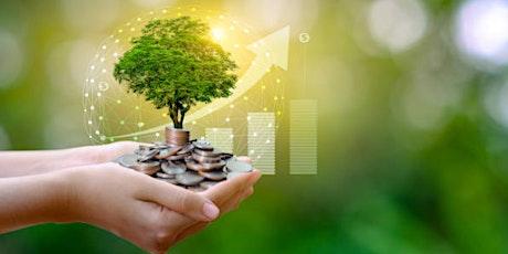Cómo Invertir sin capital y generar una rentabilidad de 3 dígitos entradas