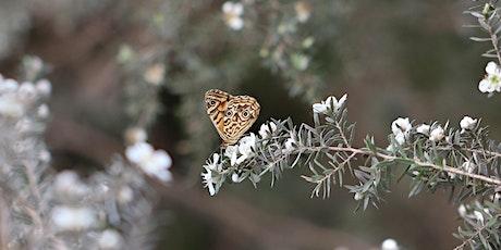 Butterfly Gardening tickets