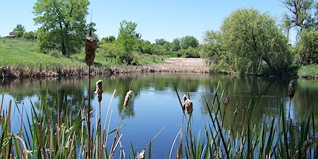 Nature Conservation-Introduction to Pond Management-Ransom Hall-CL tickets