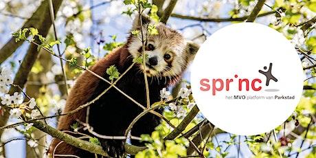 Sprinc Safari  in GaiaZOO billets