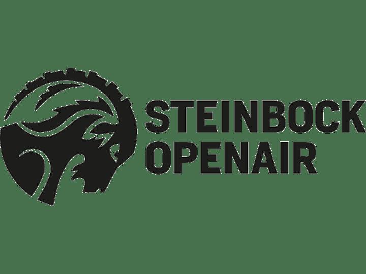 STEINBOCK OPENAIR - 2 TAGE: Bild