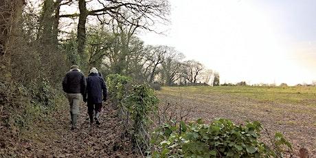 Guided Walk: Norton Fitzwarren Ancient Hillfort tickets