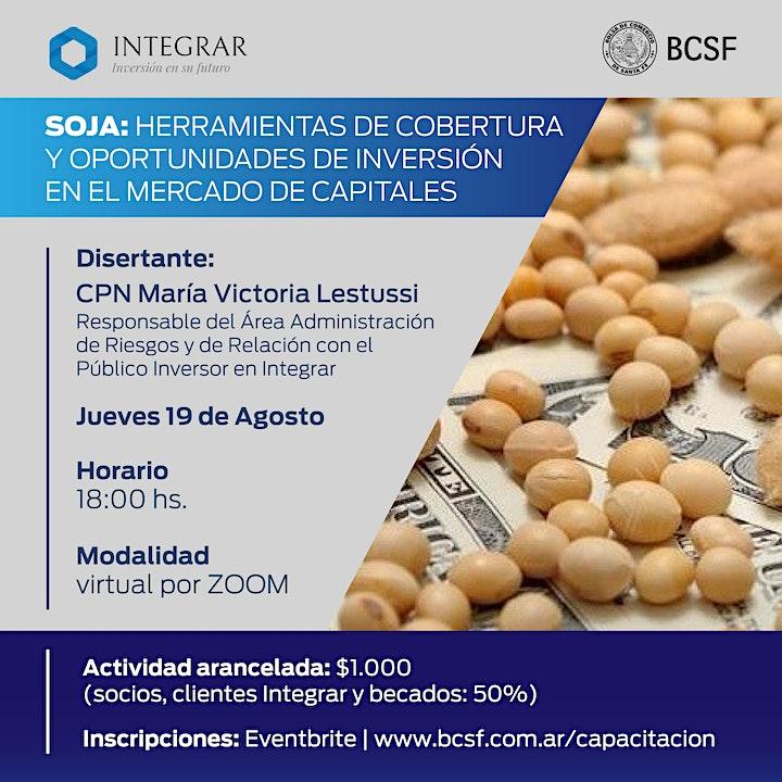Imagen de Soja: Herramientas de cobertura y oportunidades de inversión en el mercado