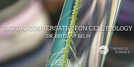 Digital Conversation with Brittany Belin - Cell Biologist tickets
