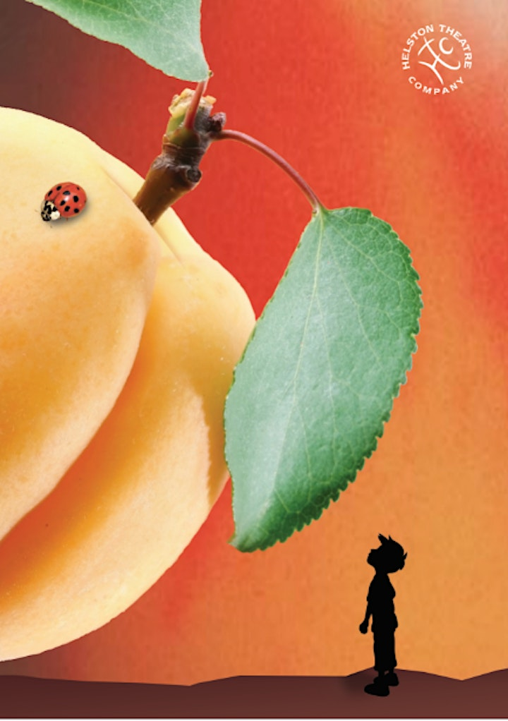 Helston Theatre Company James and the Giant Peach image