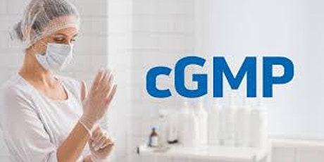 What do the FDA, EMA and PMDA Look for When Conducting cGMP Regulatory tickets