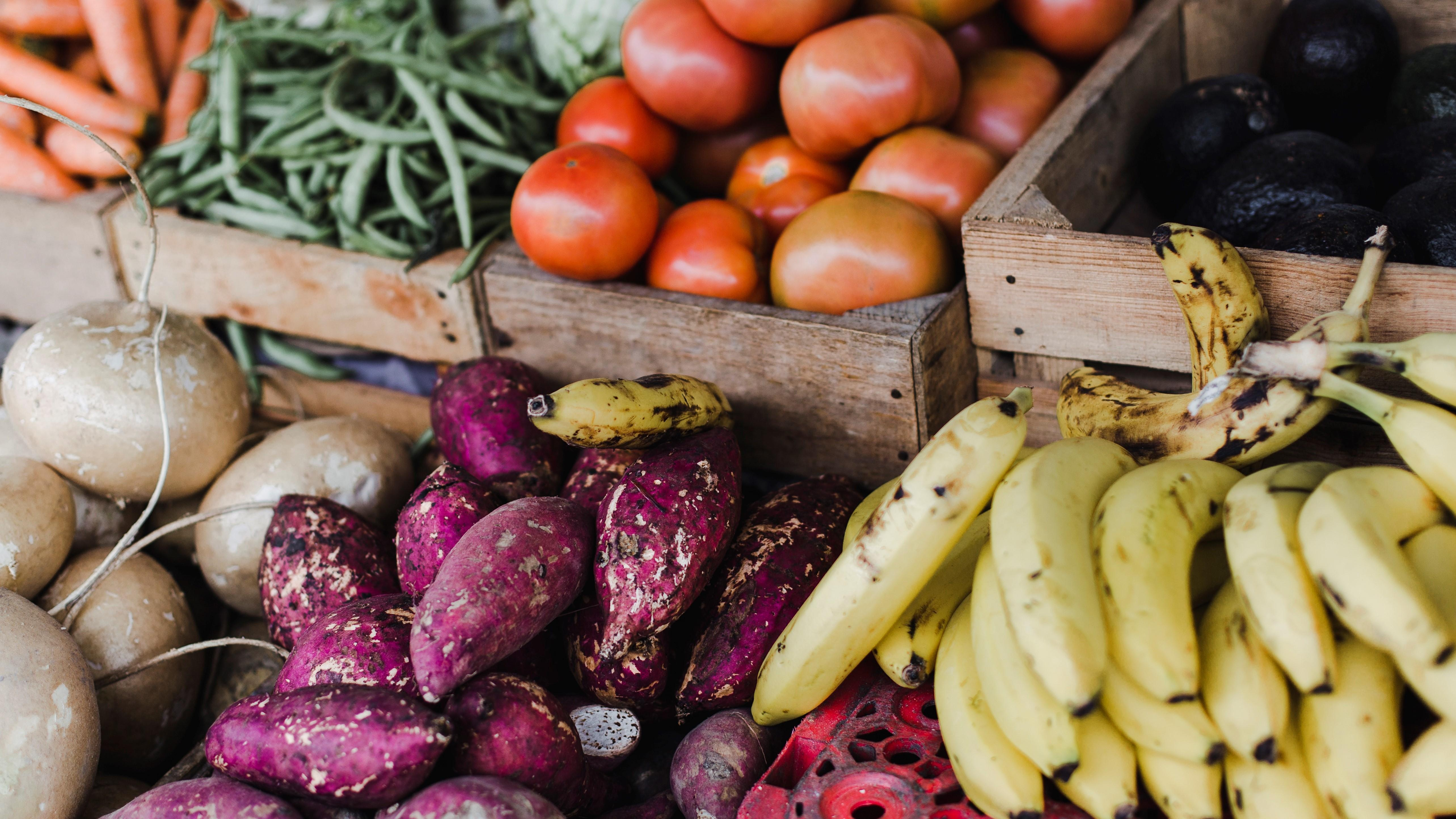 Virtual Veg Edge - The Effects of Food Waste in the US