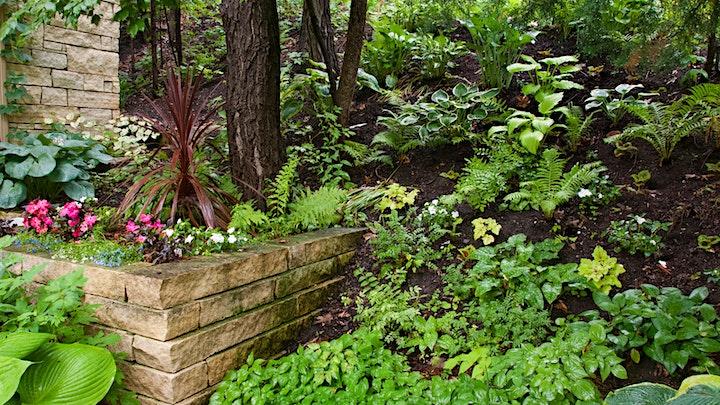 Shade Gardening image