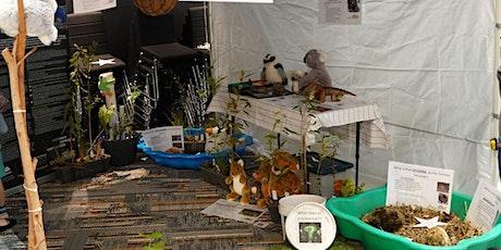 NaturallyGC Junior Wildlife Carers tickets