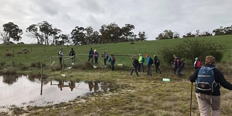 Weekend Walks for Men and Women - Simpson Trail Kersbrook 14th of August tickets