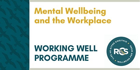 Mental Wellbeing and the Workplace tickets