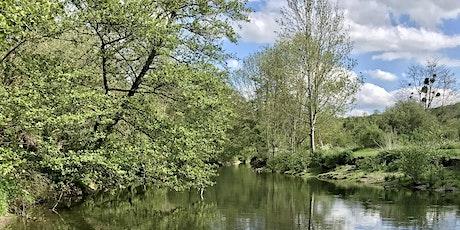 Balade en forêt de Sénart, entre la Seine et la rivière de l'Yerres billets