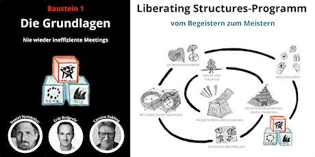 Liberating Structures-Programm: Die Grundlagen Tickets