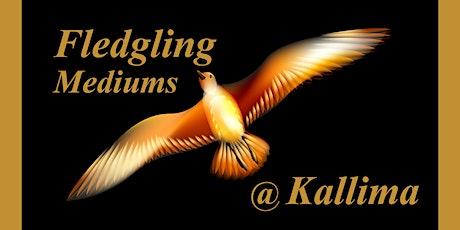 Charity Clairvoyant Fledgling Platform & 1-2-1 Reading Night tickets