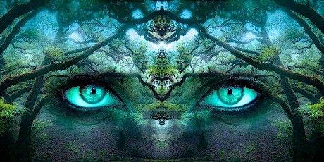 Crystal Wellbeing Meditation: August (free webinar) bilhetes