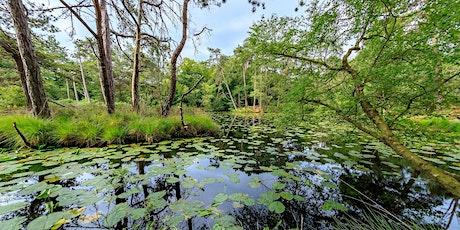 Heath Week 2021: Bystock Pools Trail Quiz tickets