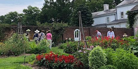 Bird Walk with New Jersey Audubon's Kristin Hock in Morven's gardens! tickets