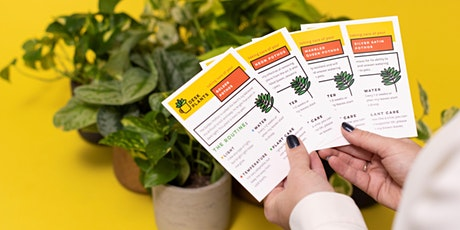How Not to Kill Your Plants - Beginner Workshop tickets