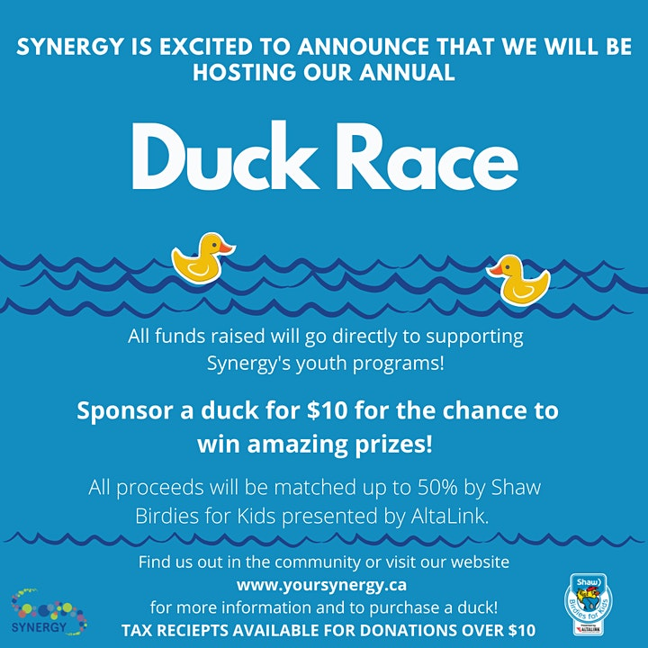 Synergy's 2021 Duck Sales image