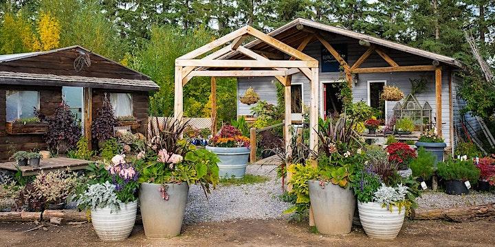 Visit Birchwood Meadows Flower Farm image