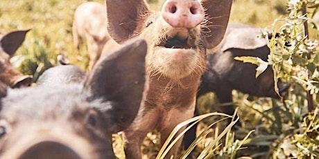 FARM KIDS - Mini Farmers Term 3 (Pigs) tickets