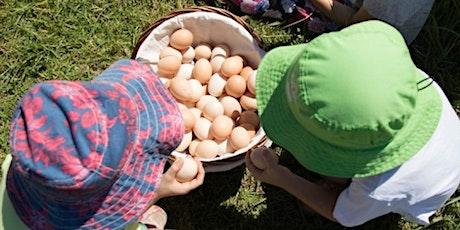 FARM KIDS - Mini Farmers Term 3 (Chickens) tickets