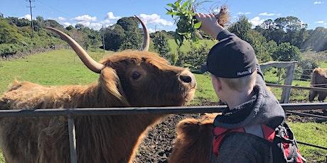 FARM KIDS - Mini Farmers Term 3 (Cows) tickets