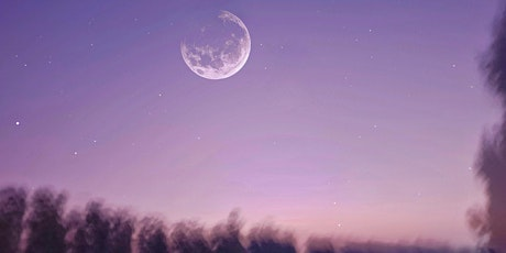 Soul Shamans - Twin Flame Full Moon Ritual tickets