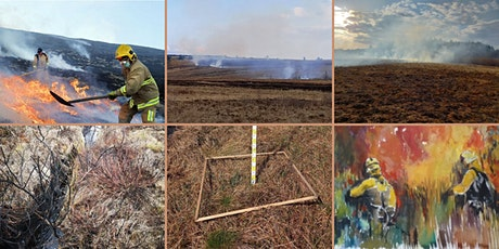 Wildfire Planning and Management in Ireland tickets