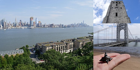 'The New Jersey Palisades: Old Millionaire's Row to NYC Playground' Webinar tickets