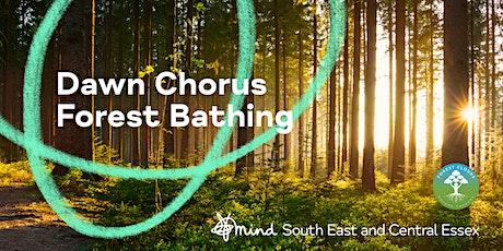 Dawn Chorus Forest Bathing tickets