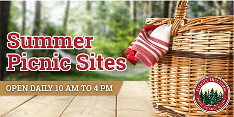 Summer Picnic Sites tickets