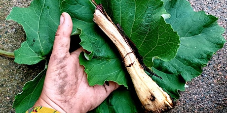 Foraging, Food, and Myth: Harvest Season tickets