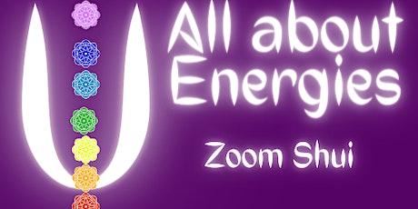 Zoom Shui webinar tickets