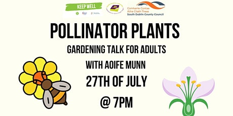 Pollinator Plants: A Gardening Talk for Adults with Aoife Munn tickets