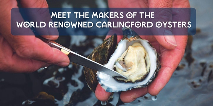 Carlingford Oyster & Guinness Cruise image