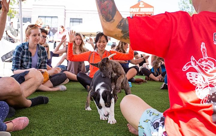 Yoga With Adoptable Puppies at Pet-A-Palooza! image