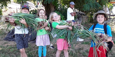 Open Farm Day: Summer Veggie Party tickets