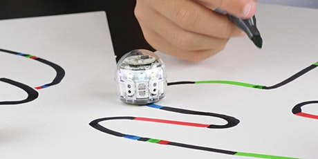 Lake Mac STEAM Week: Coding basics with mini-robots - Over 55s tickets
