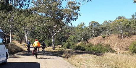 Loopy Rail Trail Weekend - Linville to Crows Nest BVRT + 160km circuit tickets