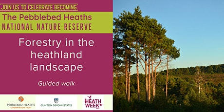 Forestry in the heathland landscape - HEATH WEEK 2021 tickets