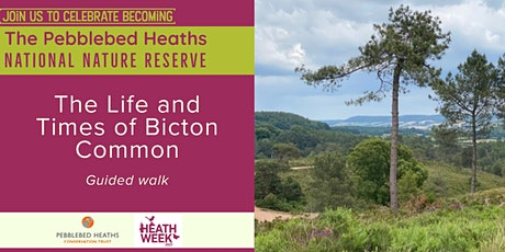 The Life and Times of Bicton Common - HEATH WEEK 2021 tickets