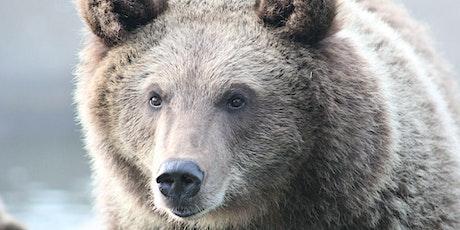 Summer of Play - Visit Camperdown Wildlife Centre tickets