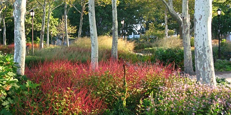 Workshop at The Battery: Growing Low Maintenance Perennials tickets