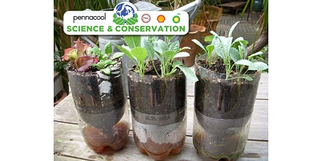 Science Building a Hydroponic System Std 4-5 tickets